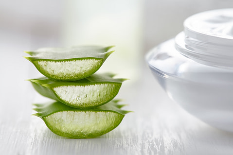 Aloe vera herbal slices healthy natural cosmetic dermatology medicine anti wrinkle product with cream on white background