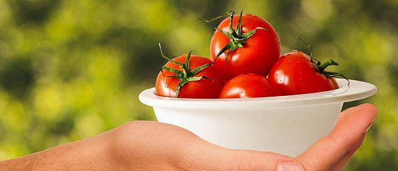 tomatoes-1993695_960_720-e1504869349719